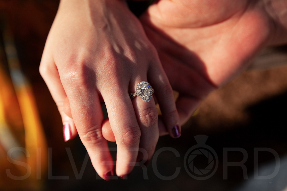 Engagement photography at JC Raulston Arboretum in Raleigh by Silvercord Event Photography-3